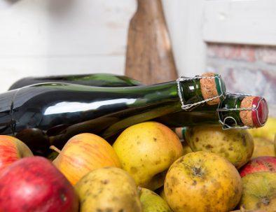 Dégustation de pommes et cidre de Bretagne durant vos vacances