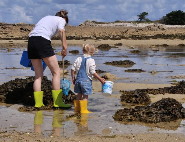 Pêche à pied en famille sur la Côte de Granit Rose