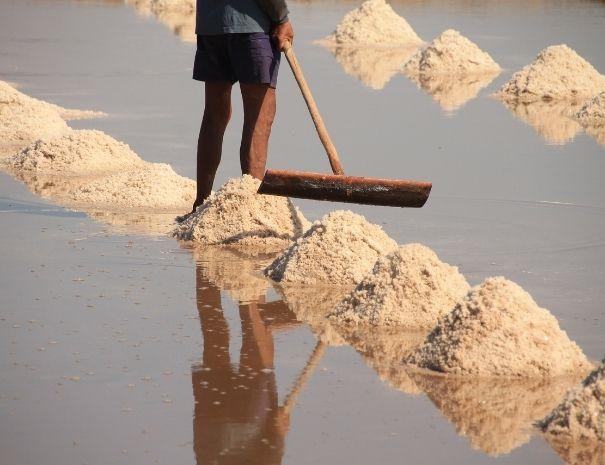Salt marsh workers in Guerande