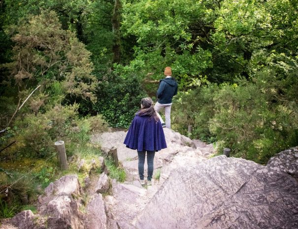 Randonnée en Forêt de Brocéliande