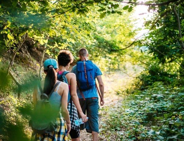 Randonnée en groupe en forêt de Brocéliande