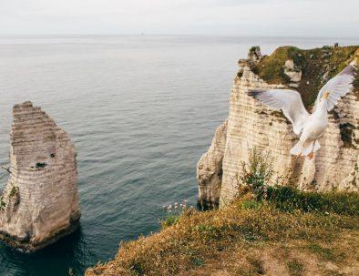 Visites des Falaises d'Etretat en Normandie