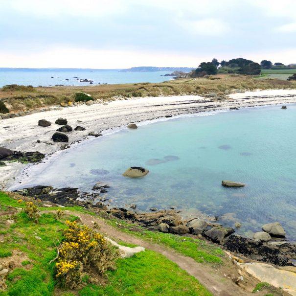 Callot island in Morlaix bay